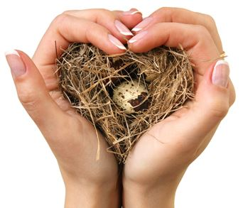 Heart Nest with Hands