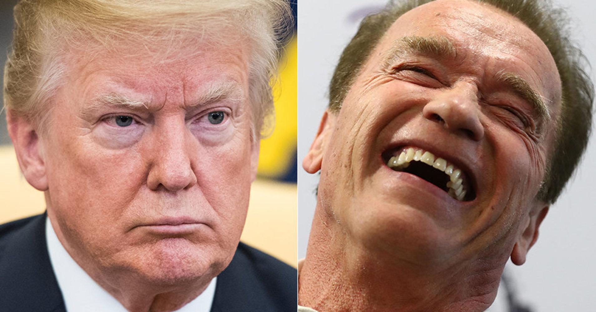 Arnold Schwarzenegger Burns Trump's Coal Plan With One Brutal Tweet